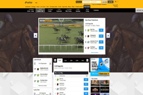 Betfair Virtual Sports